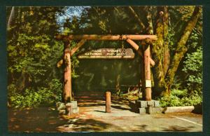 Gateway Muir Woods National Monument Red Woods California CA Entrance Postcard