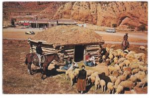 Navajo Family with Their Sheep in  Front of the Hogan PPC Unposted c 1950's
