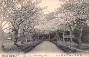 Japan Old Vintage Antique Post Card Omura Templ Cherry Tree Hizen Unused