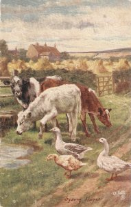 Sydney Hayes. Refreshers Tuck Oilette Our Farm Ser.PC # 9360