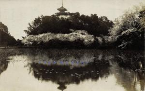 1920 Yokohama Real Photo Postcard: Beautiful Garden Honmoku - Rare!