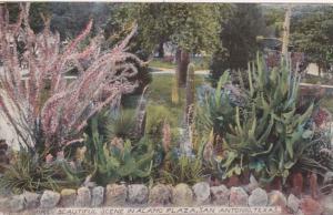 Texas San Antonio Beautiful Scene In Alamo Plaza 1915