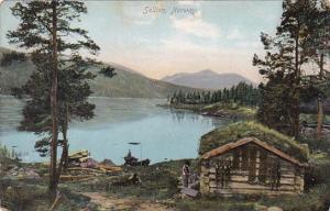 Norway Sollien Country Scene