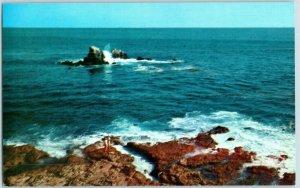 Laguna Beach Rocky Reefs and Tide Pools California Postcard
