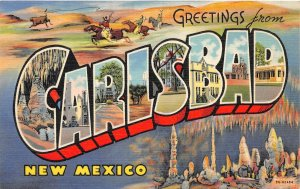 G44/ Carlsbad New Mexico Postcard Linen Large Letter Teich Greetings Cave