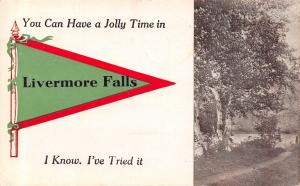You Can Have a Jolly Time in Livermore Falls Maine~I Know~1912 Pennant PC