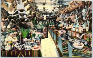 San Antonio, Texas Postcard Buckhorn Curio Museum Metro Linen c1940s Unused
