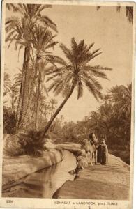 TUNISIE CPA LEHNERT & LANDROCK (113928)
