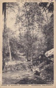 Monrovia Canyon , MONROVIA , California , 00-10s