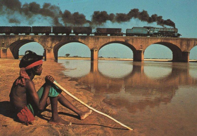 Steam Train at Bengal Ganges India Lancashire Cattle Boy Postcard