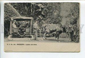 432722 Portugal Madeira local buffalo minibus Vintage postcard