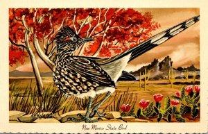New Mexico State Bird Roadrunner