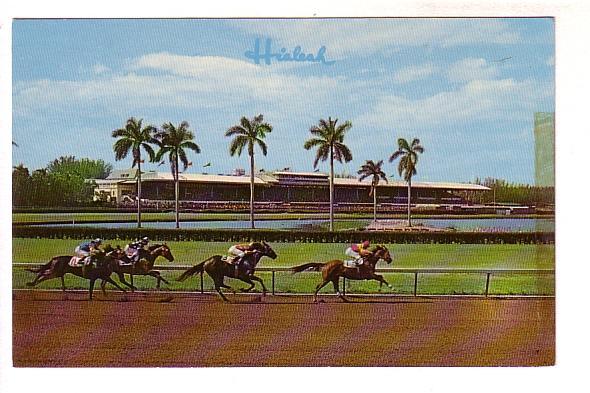 Thoroughbred Horses Racing at Hialeah Racecourses, Miami, Florida,