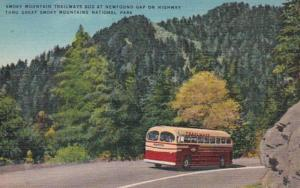 Tennessee Smoky Mountain Trailways Bus At Newfound Gap Highway