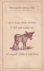BUFFALO, New York, 1900-1910's; Noah-Foster Co. , donkey