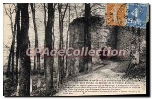 Old Postcard Provins hole cat Fortifications