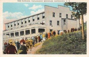 LPS95 Goffstown New Hampshire Uncanoonuc Mountain Pavilion Vintage Postcard