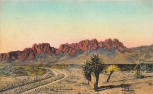 Organ Mountains, New Mexico, Early Hand Colored Postcard, Unused
