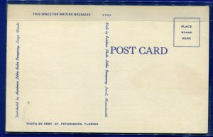 Pass-a-Grille Beach St. Petersburg Florida fl surf scene Gulf Mexico postcard