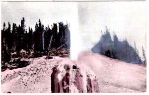 [No Publisher] Jupiter Terrace, Yellowstone National Park