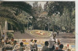Postal: Santa Cruz de Tenerife: Parque Municipal