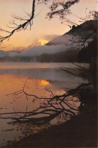 Mount Rainier - Olympia, Washington