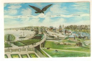 View of New Orleans taken from the Plantation of  Marigny  Vintage American PC