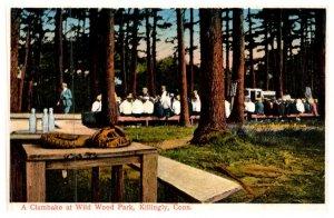 Connecticut Killingly , Clambake , Wildwood Park