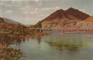 Union Oil Company's Salmon River Tributary of the Snake River Vintage Postcard