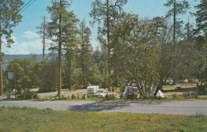 SUMMERLAND , B.C. , Canada ,1950-60s ; Peach Orchard Park Tent Camp