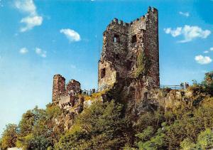 Burgruine Drachenfels am Rhein Castle Ruins Chateau