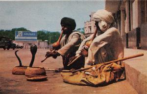 BR40398 Snake charmers karachi    Pakistan