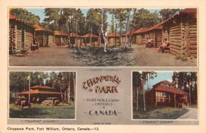 Fort William Ont. Canada scenic views Chippewa Park antique pc ZD549880