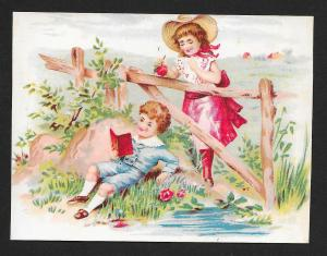 VICTORIAN TRADE CARD Wicke Harness & Trunks Girl & Boy at Fence