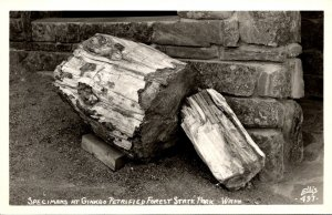 Washington Specimens At Ginkgo Petrified Forest State Park Real Photo