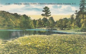 COLUMBIA , South Carolina , 30-40s; One of the Lakes in Arcadia