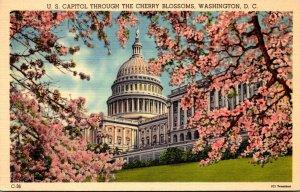 Washington D C United States Capitol Through The Cherry Blossoms
