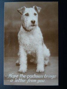 DOG Portrait HOPE THE POSTMAN BRINGS A LETTER - Old RP Postcard