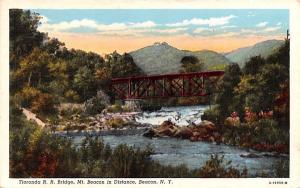 Tioronda RR Bridge Beacon, New York Postcard