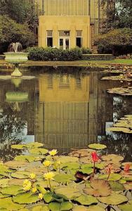 St Louis MO~Forest Park~Jewel Box~Entrance~Lily Pond~Fountain 1950s Postcard