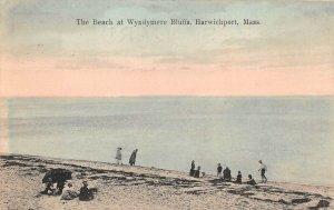 LPS84 Harwichport Massachusetts Wyndymere Bluffs Beach Hand Colored Postcard