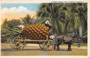 Pineapple Florida, USA 1921