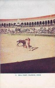 Spain Valencia Bull Fight