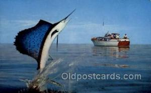 Jumping Marlin Fishing Old Vintage Antique Postcard Post Card  Jumping Marlin