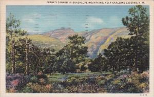 New Mexico Carlsbad Caverns Franks Canyon In Guadalupe Mountains 1937