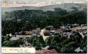 MILL VALLEY CA Postcard Bird's-Eye Downtown View HAND-COLORED Reimann 1907
