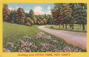 New Jersey Greetings From Little York 1960