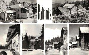 Romania Păltiniș Real Photo 03.74
