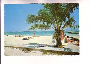 People on the Beach, The Bahama Islands