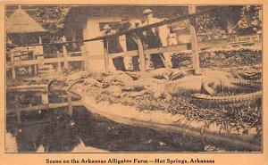 Alligators Arkansas Alligator Farm Hot Springs, Arkansas, USA Unused